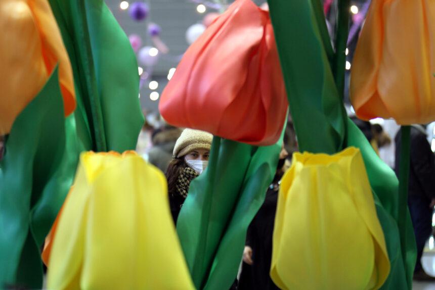 гигантские тюльпаны, фестиваль рукоделия и дизайна
