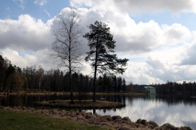 ГМЗ Гатчина, Гатчинский парк, Белое озеро, весна, природа